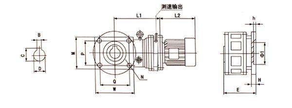 6,电子秤专用减速机安装和联接尺寸